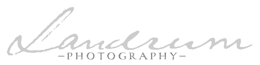 Landrum Photography, LLC | Baltimore Wedding & Family Photographer