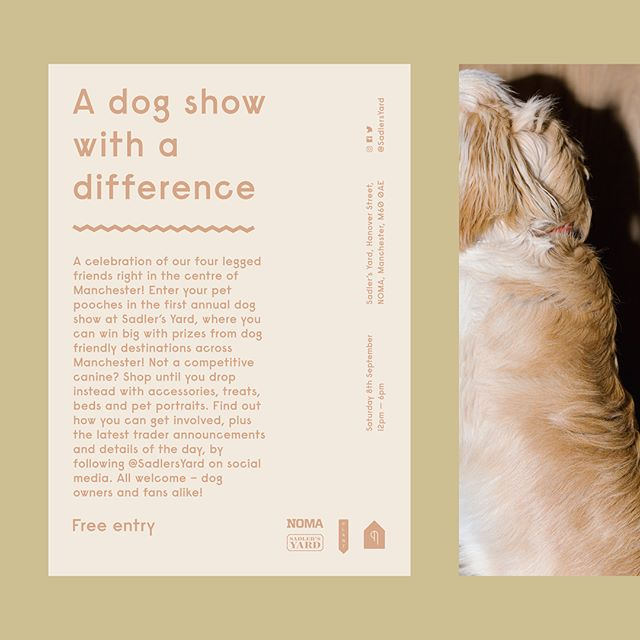 Dogs and design = my dream combo, so I was absolutely buzzing when the gang over at @ohokltd asked me to create some bits for the dog show happening on @sadlersyard today! I can't wait to fuss over all the heckin' good boys, and you should come down and do the same too if you're in Manchester! — A huuuuuge merci beaucoup to @matt_leeves for the 📸 — #layoutdesign #designdaily #griddesign #layout #designoftheday #printdesign #visualstyle #visualgraphc #viscom #posterdesign #designthinking #goodboysofinstagram