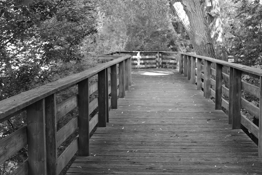 bridge-wood.jpg