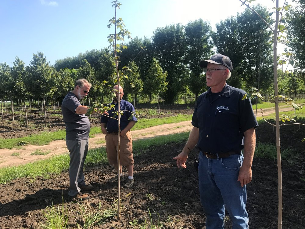 U of I Extension educator Richard Hentschel and Ryan Doty (left) inspect this year's planting while Ken Doty (right) talks with First Light host Brian O'Keefe