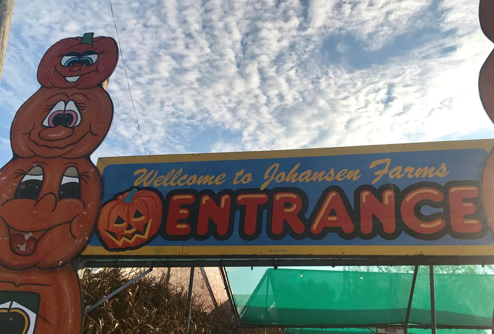 A banner welcomes pumpkin hunters to the Johansen Farms farm stand in Bolingbrook