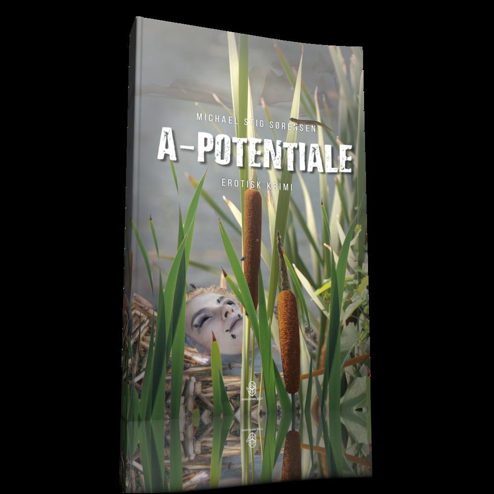 a-potentiale-3D.png