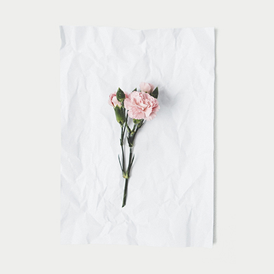 boutique de flores, decoração de eventos, assinatura de flores, flores para empresa, presentes