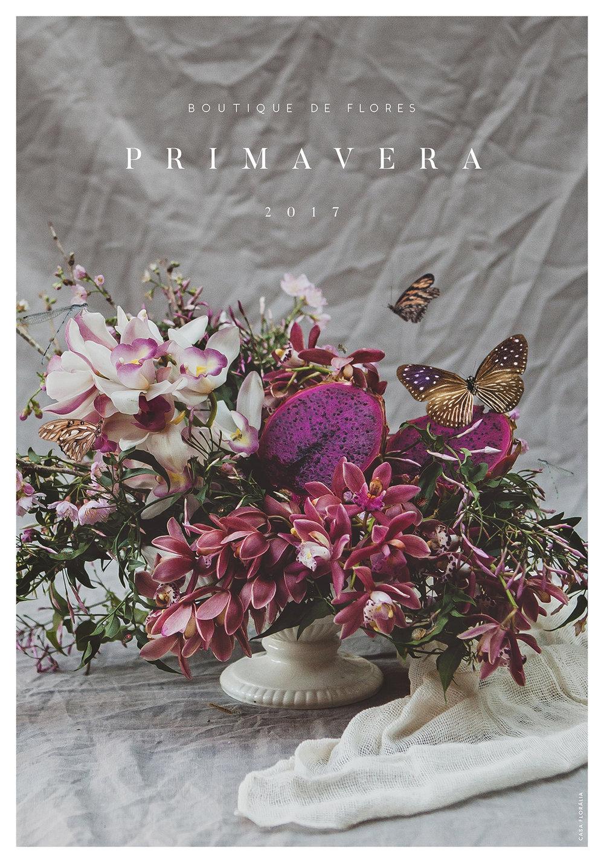 boutique de flores, primavera, decoração e assinatura de flores