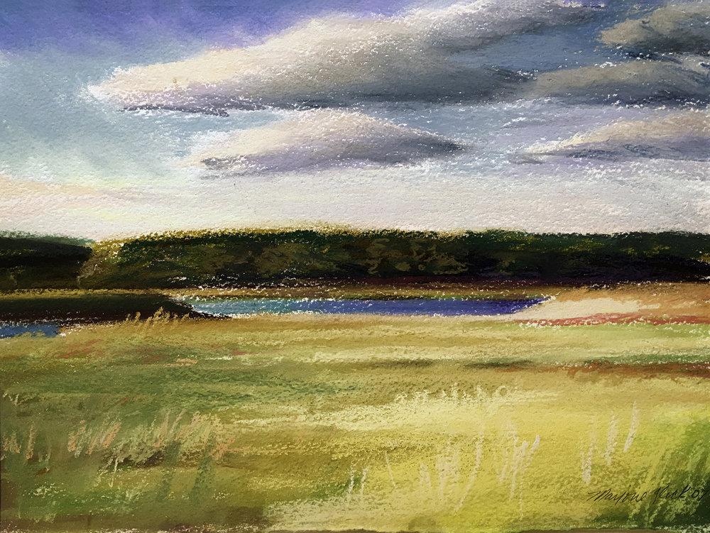 Parsons Marsh