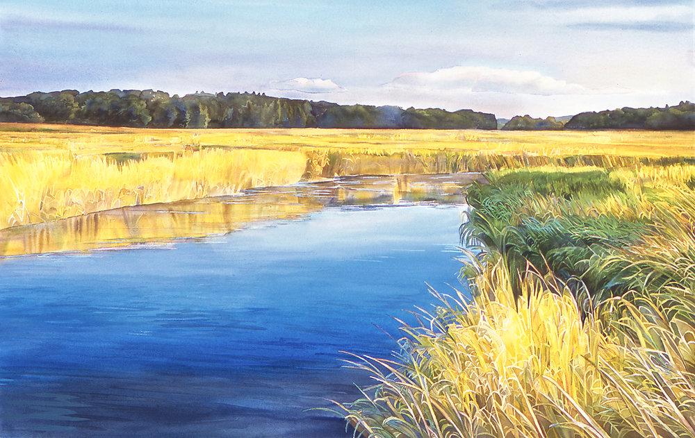 Marsh, Radiance