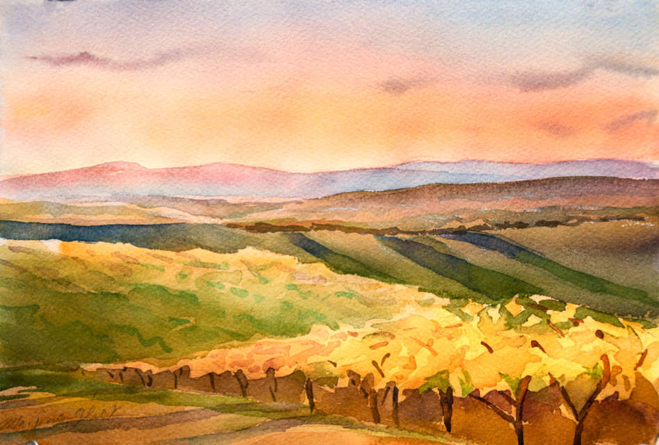 "Golden Light, Tuscany, Watercolor, 8""x11"",©Marjorie Glick"