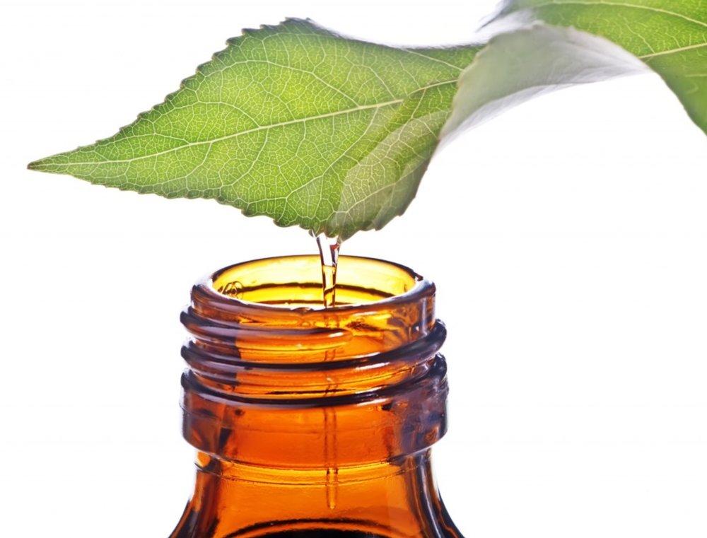 Naturally antiseptic tea tree