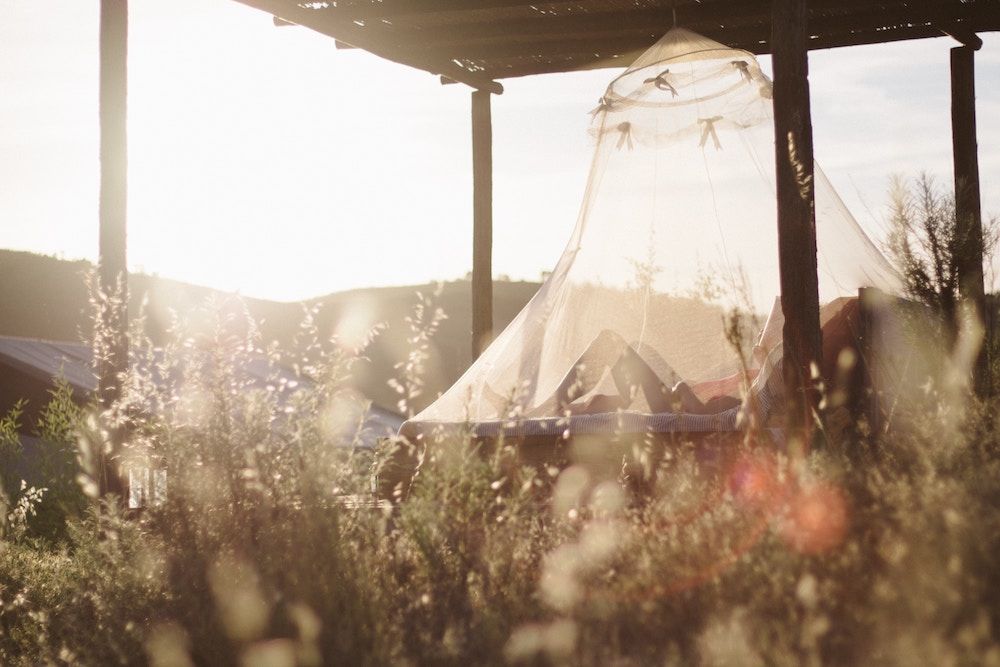 5+ways+to+keep+mosquitos+away+this+summer.jpg
