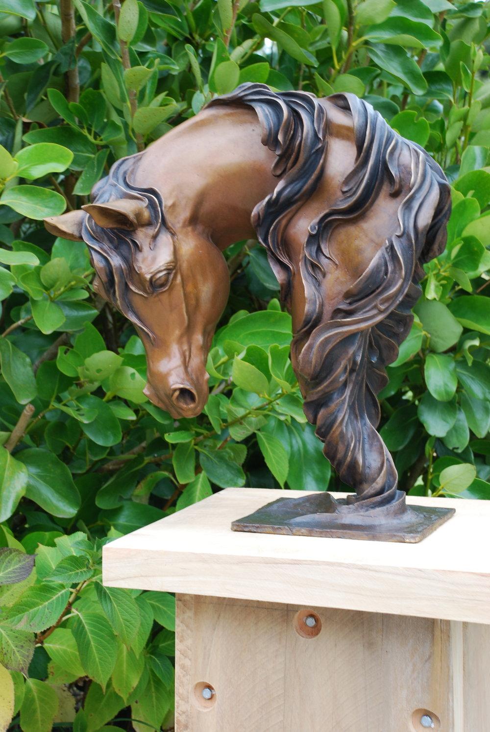 Equus ex Arabia.JPG