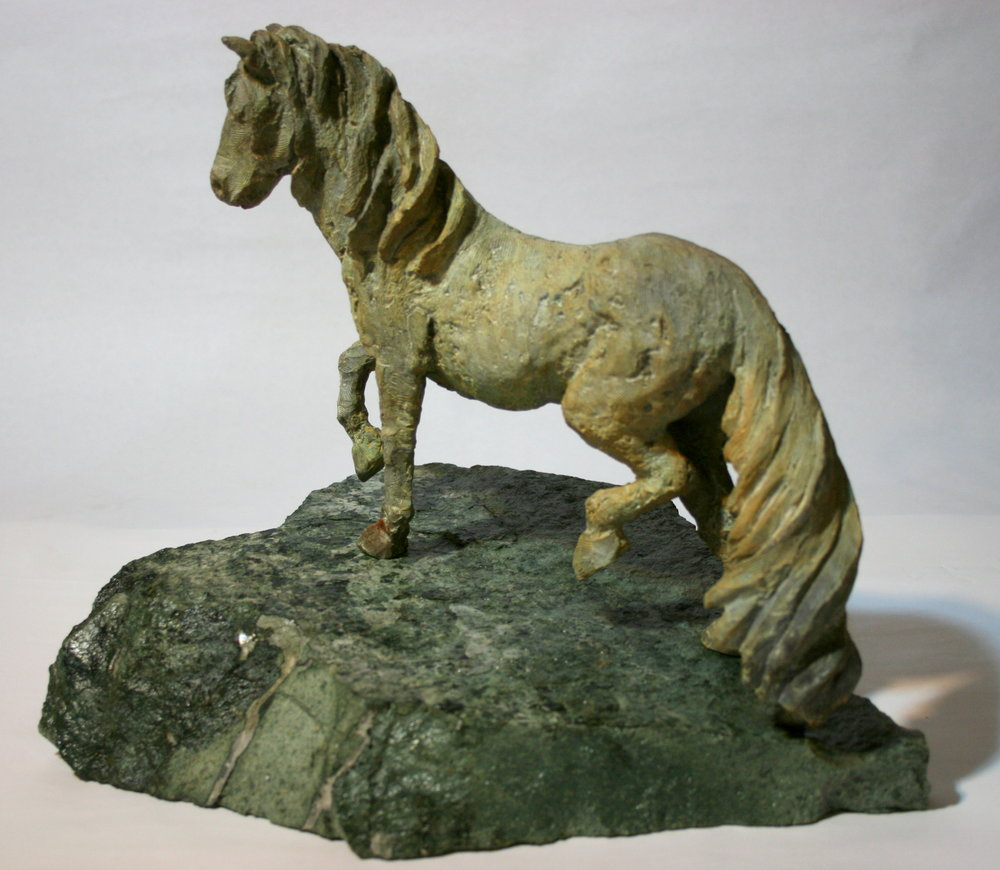 Kaimanawa Horse2.jpg