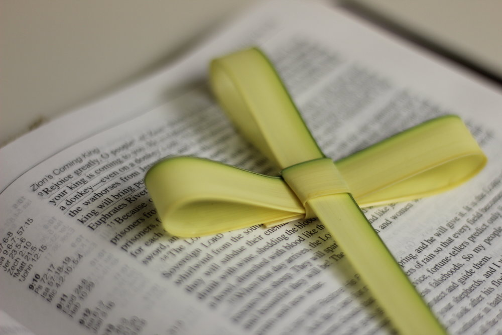 Palm Cross Bible.jpg
