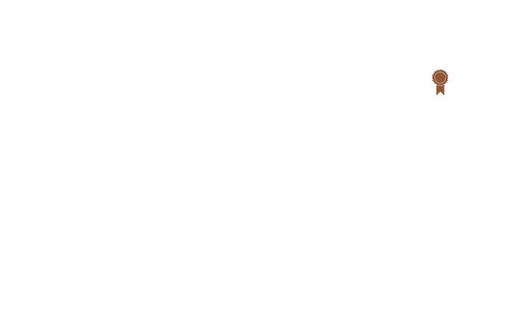 tekMountainBRONZE.png