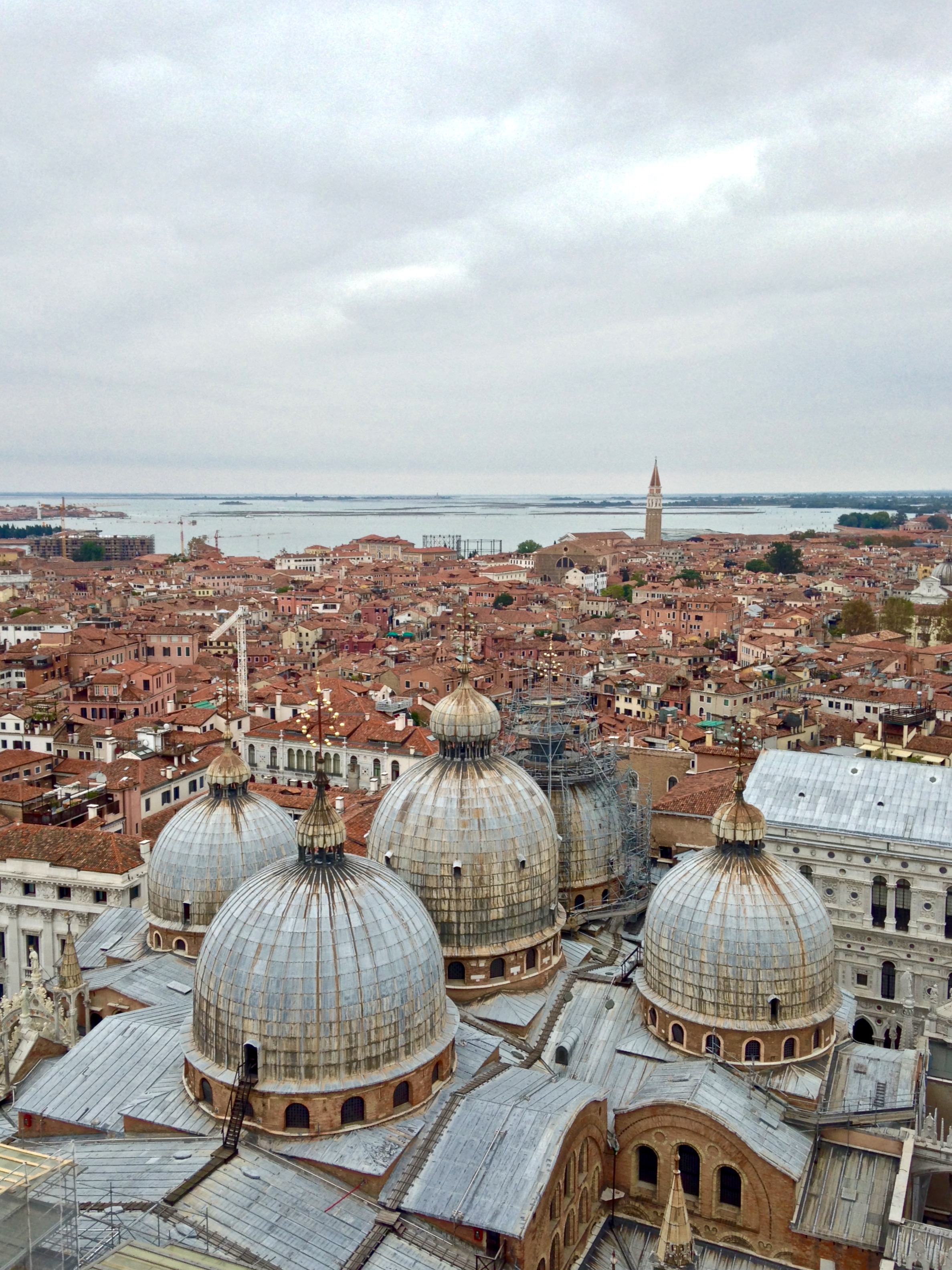 The view from above | Piazza San Marco, Venice