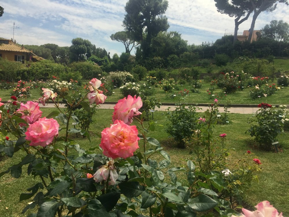 Rose Gardens, Rome