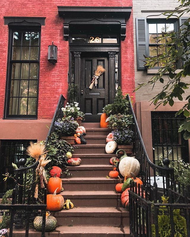 Do you have a favorite stoop? This is my favorite stoop. Does stoop even sound like a word anymore? 🍁Stoop.🍁