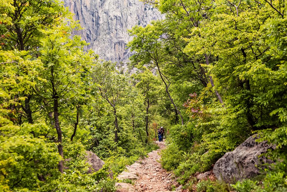 MA_Hiking_1.jpg