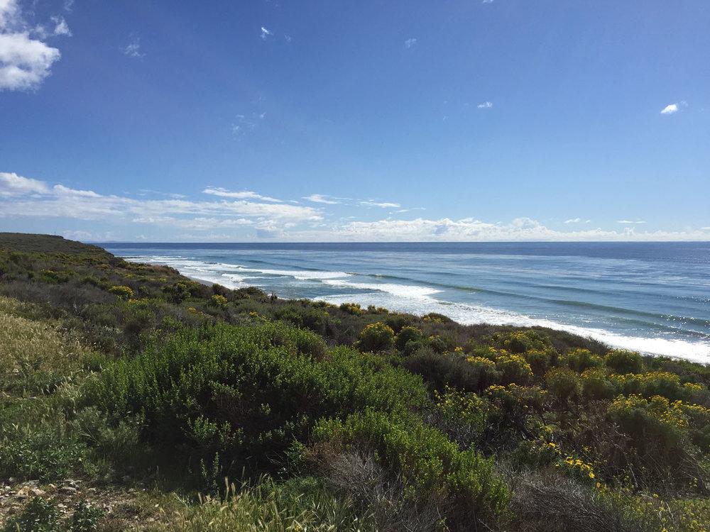 Coastline_207.jpg