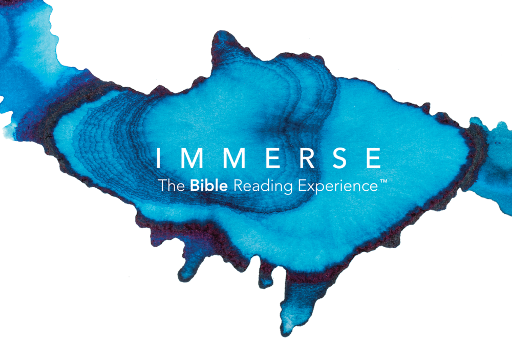 Immerse banner.png
