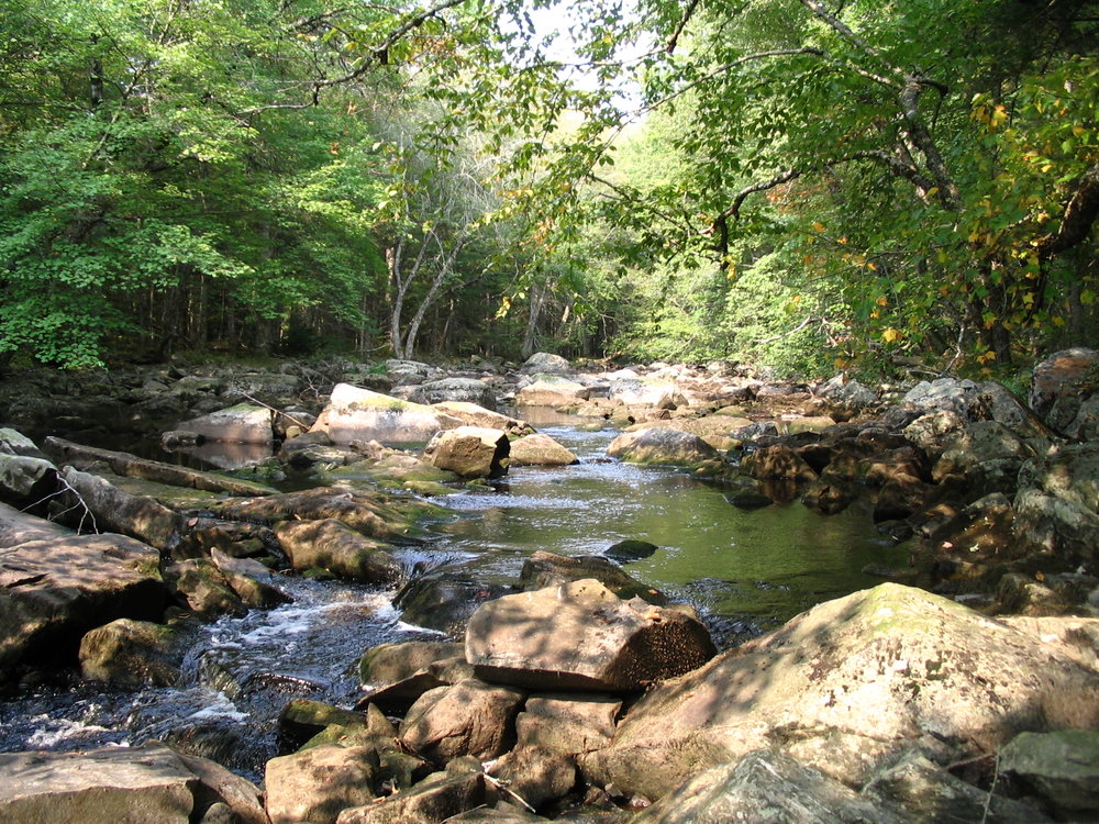 The Little River in the Great Smoky Mountains National Park
