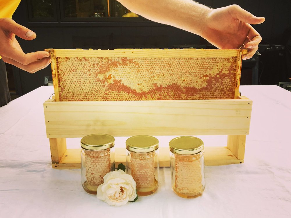 Björn's Colorado Honey