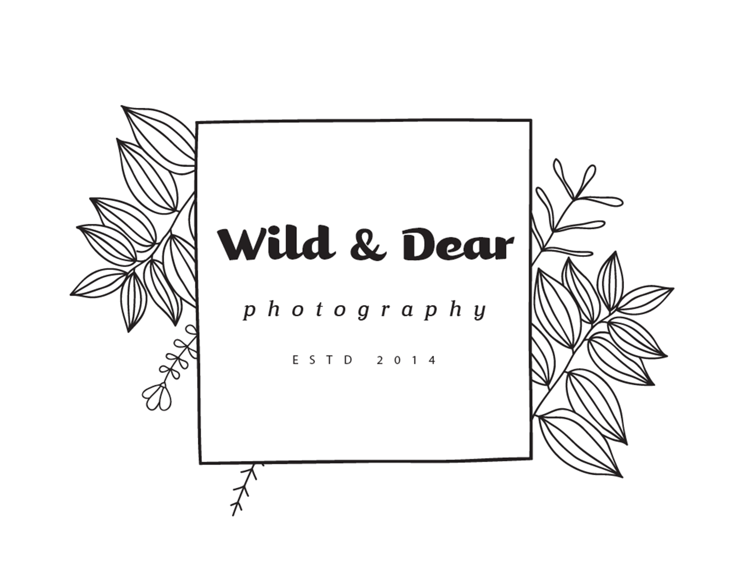 Wild & Dear Photography