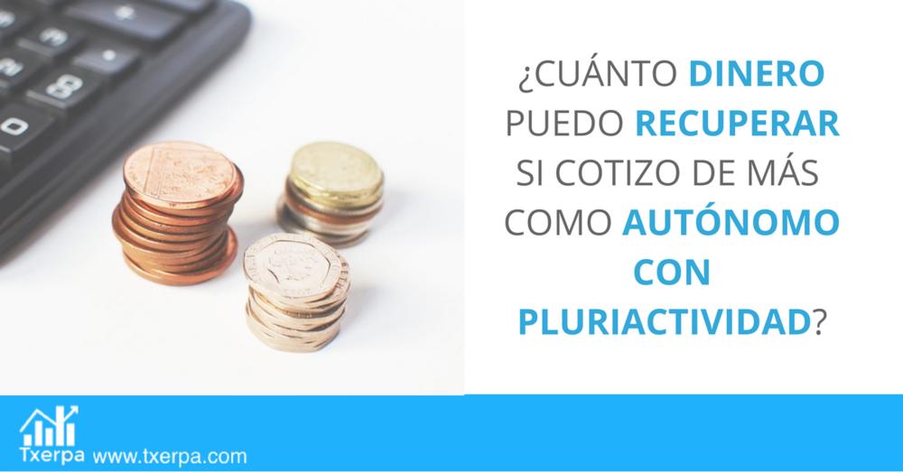 devolucion_autonomo_pluriactividad_txerpa.png