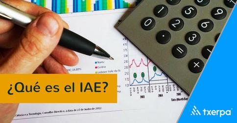 que_es_el_IAE_txerpa.png