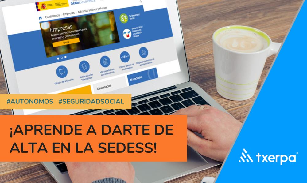 registro_electronico_sede_seguridad_social_txerpa.png