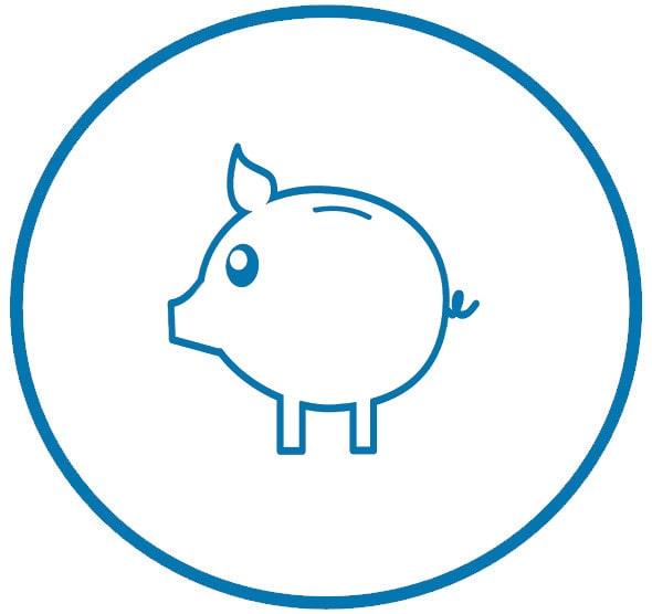 cerdo-min (1).jpg