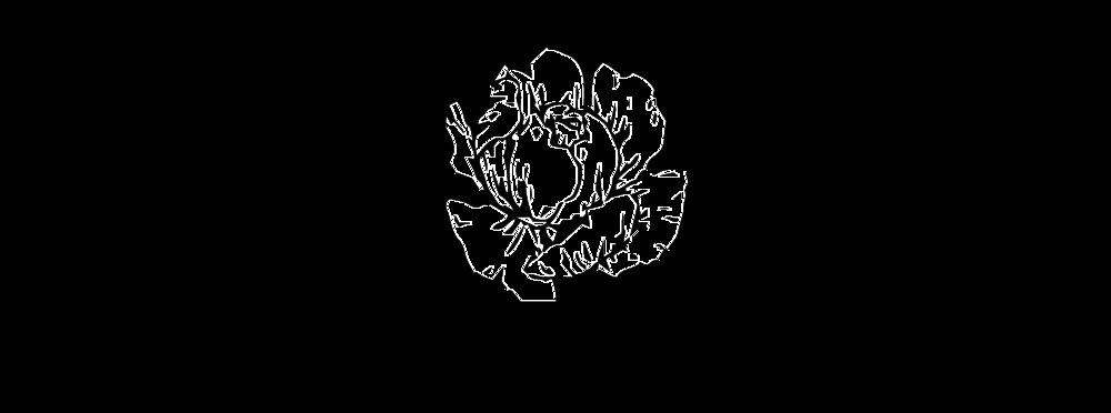 msavdesignlogoflower.png