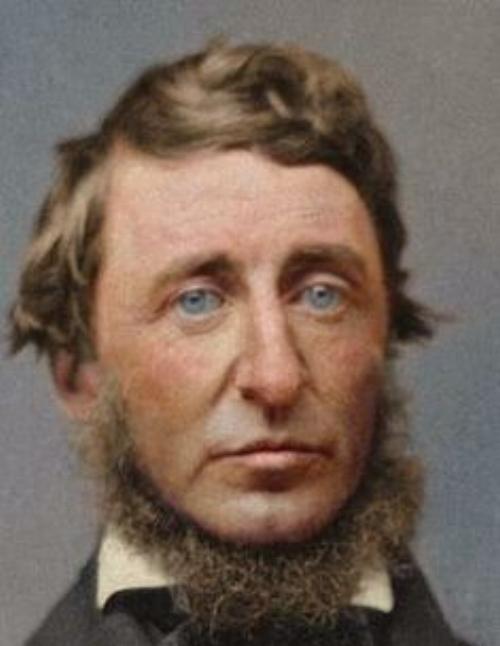Thoreau Image.jpg