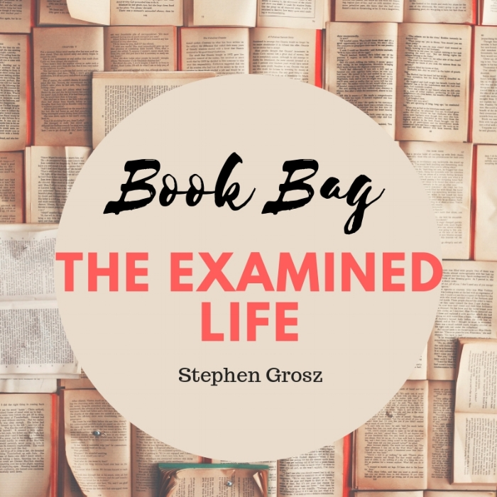 The Examined Life >> Book Bag The Examined Life A Well Spent Day
