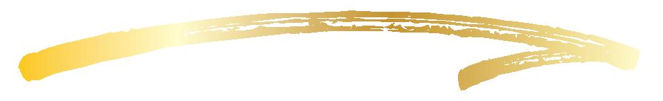 Jaimie Z Logo - Swash for Nav 1-06.png