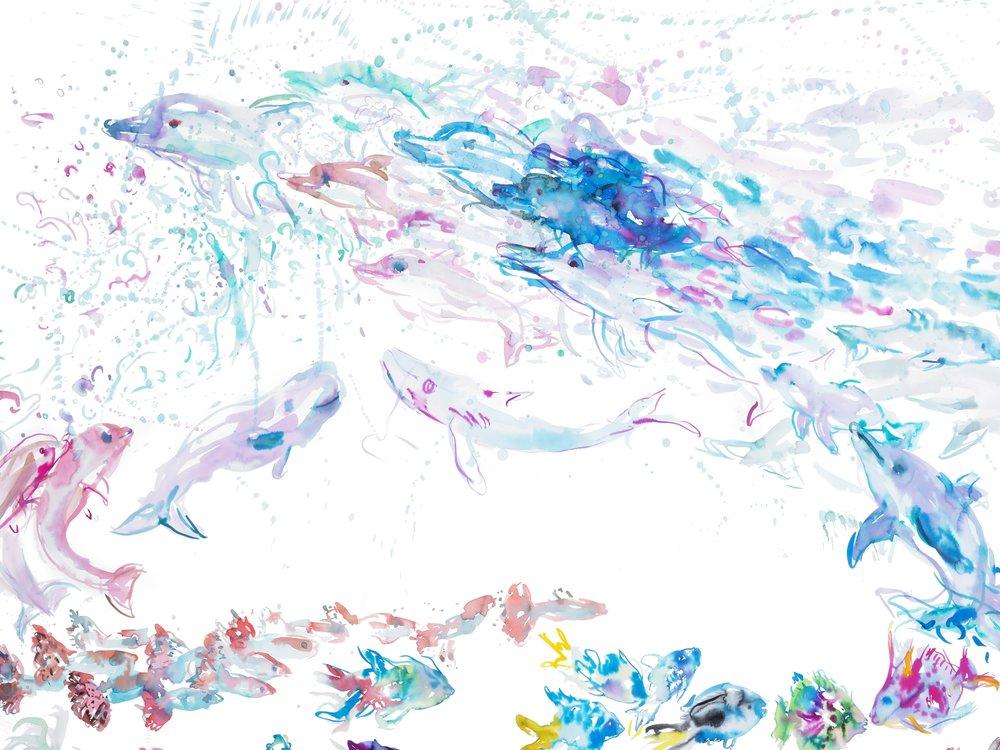 dolphins5LR.jpg