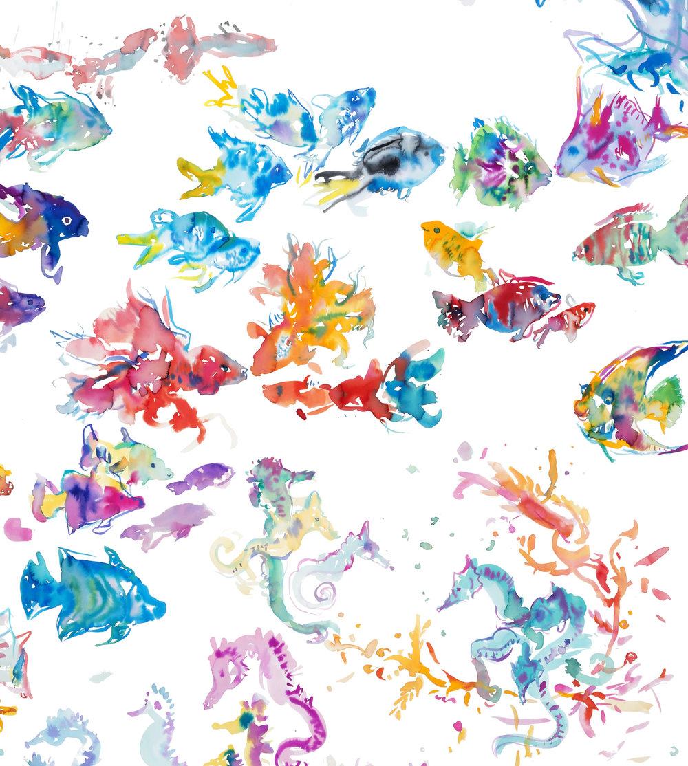 colorful fishSeahorses2.jpg