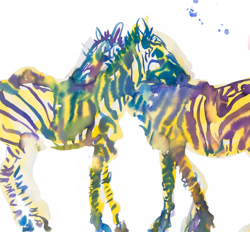 zebras copy.jpg