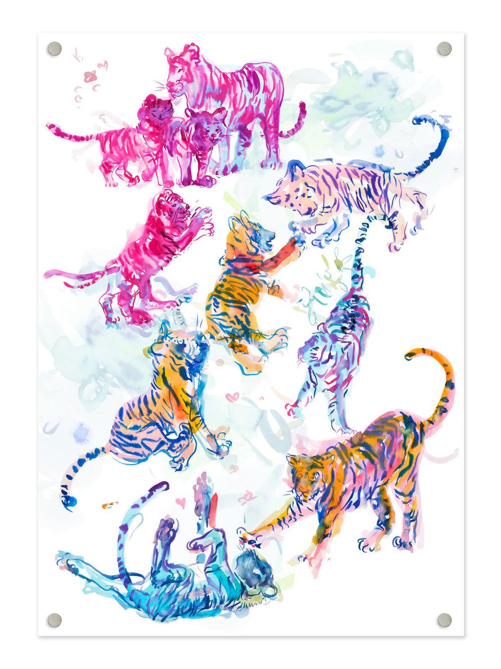 Tigers_Magnets.jpg