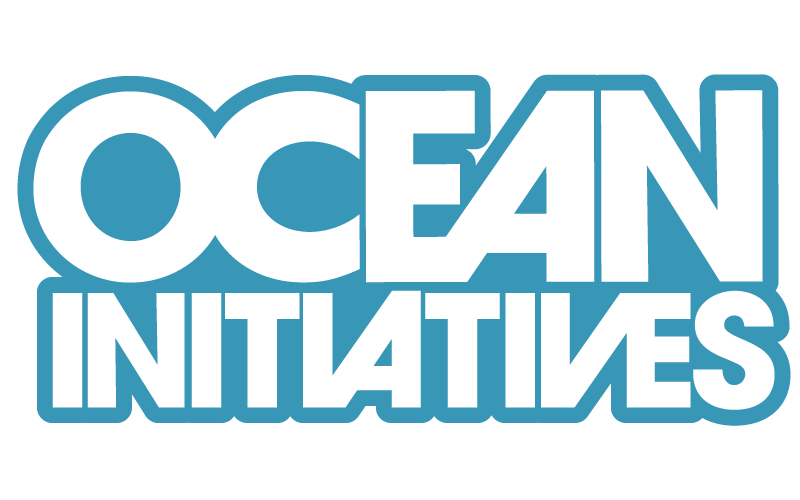 ocean-iniciatives-surfrider-foundation.png