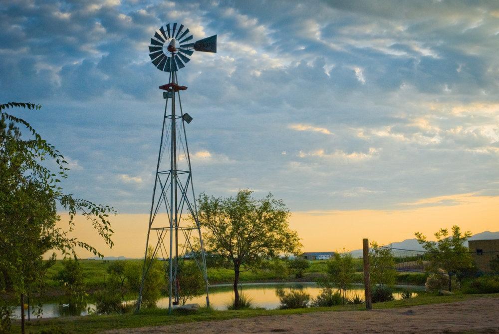 Windmill  Sonoita, AZ