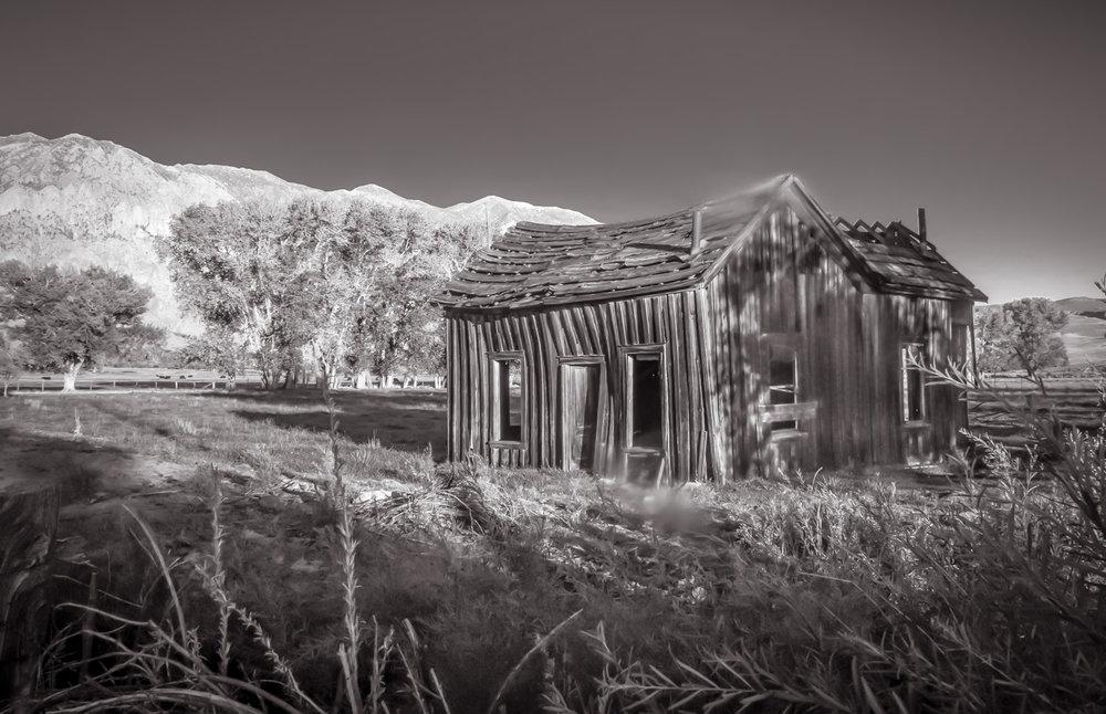 Abandoned Hut  Buttermilk Mountain, CA