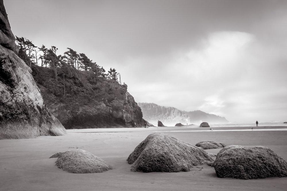 Rock Stars  Oregon Coast