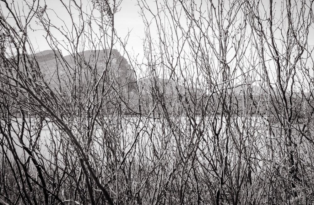 Filtered View  Saguaro Lake, AZ