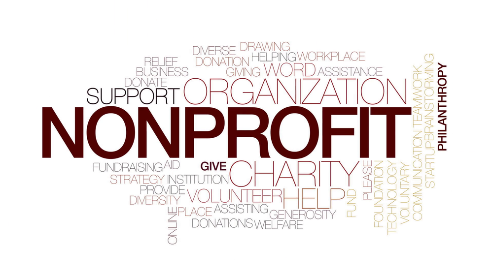 case study how one not for profit organization is adapting to