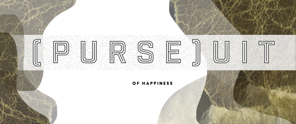 purseuit.png