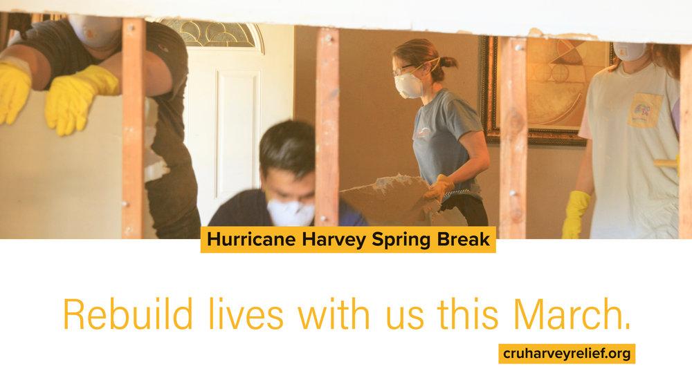 harvey spring break promo3.jpg