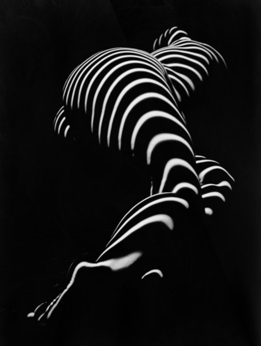 BBW Sensual Legs Hips and Ass of a Large Woman Big Beautiful Art Nude Black and White Poster