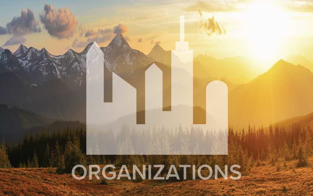 orgs pic-02.png