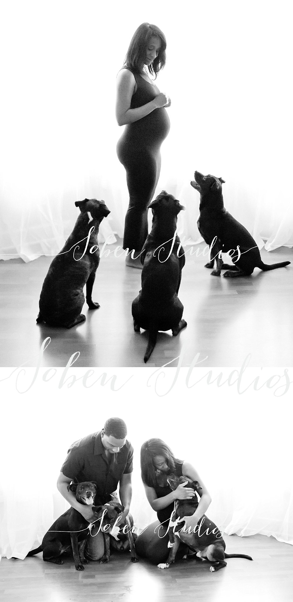 Chicago Maternity Photographer,Chicagoland Pregnancy Portraits,