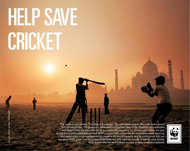 'Help Save Cricket' poster by Ogilvy (New Delhi)